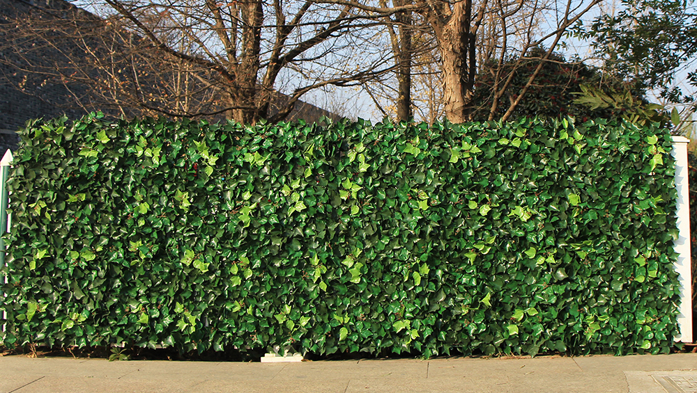 ivy fence screen