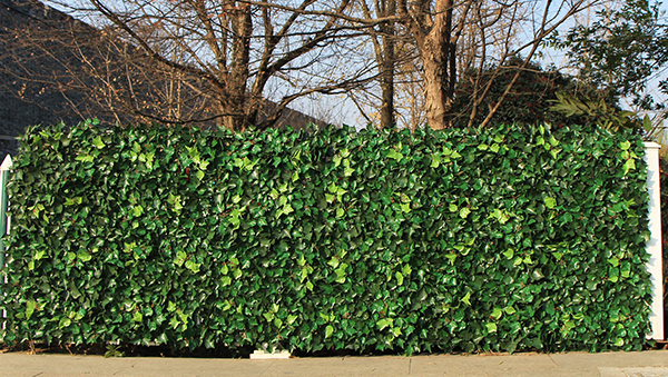 artificial ivy hedge