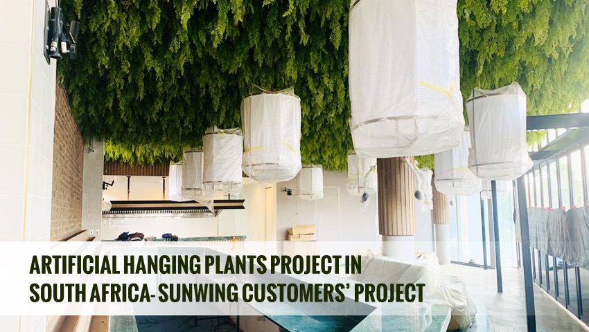 Artificial hanging plants project in South Africa