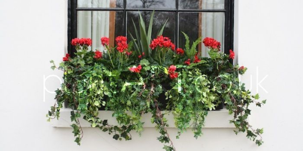 faux flowers for the window boxes